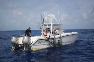"Guy Harvey and crew work to secure a tiger shark to the side of ""The Prowler""."