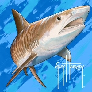 Tiger Shark by Guy Harvey (available as cell phone wallpaper from Myxer - http://www.myxer.com/theme/GuyHarvey/)