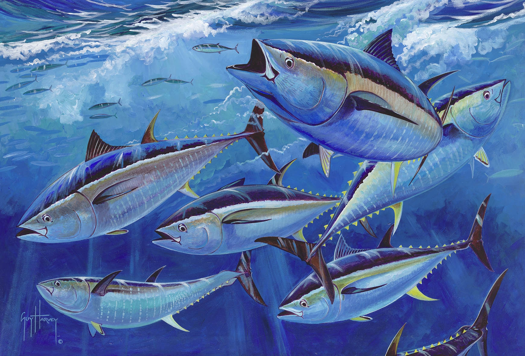 new-england-bluefin.jpg
