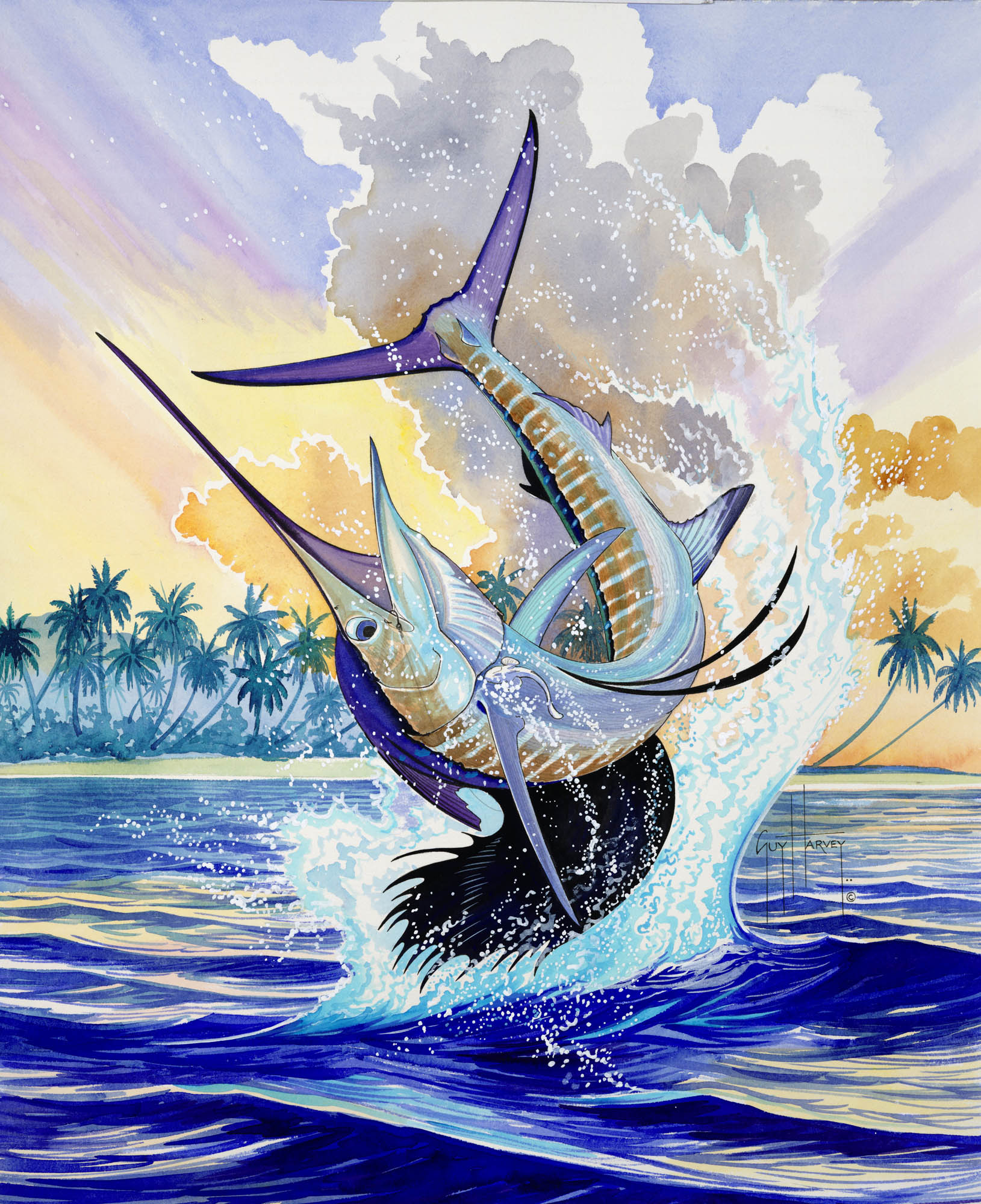 biography and artwork of guy harvey Biography and artwork of guy harvey guy harvey was born in lippspring germany on september 16 1955 guy harvey is a 10th generation jamaican as his family of german heritage immigrated there.
